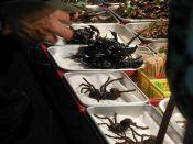Skorpione am Stiel zum Verkauf auf der Kao San Road in Bangkok